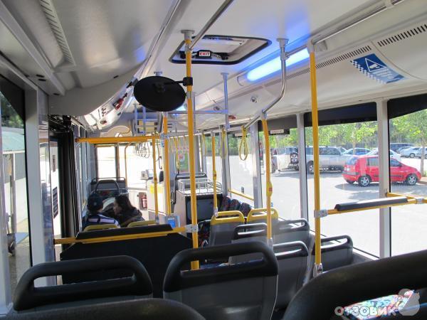 Автобусы г. Канберра (Австралия, Канберра) фото
