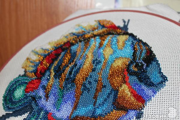 Набор для вышивания Чарiвна