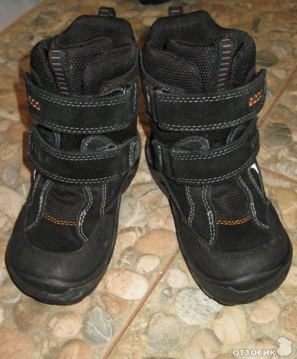 9aef9a661 Отзыв о Ботинки детские Ecco Gore-Tex Snowride зимние | Ботинки для ...