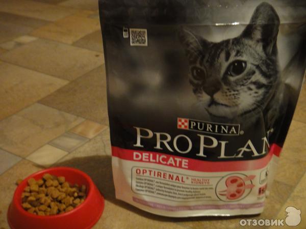 Проплан сухих кормов котам