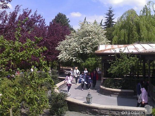Парк развлечений диснейленд франция