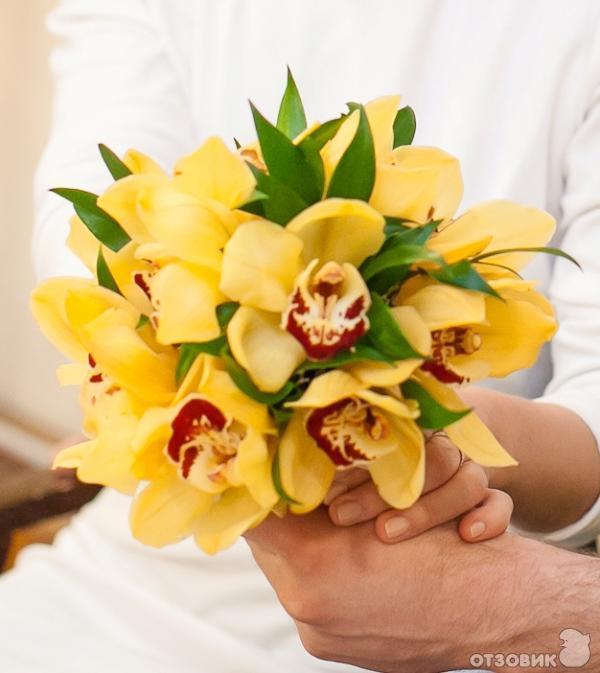 Магазин цветов спб заказ гидролат розы купить в аптеке