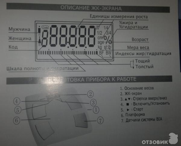 Весы Cameron Bfs-222 Инструкция img-1