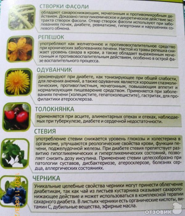 Лечение травами сахарного диабета аллергии похудение