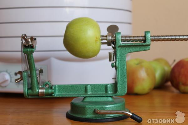 Резка яблок для сушки своими руками 72