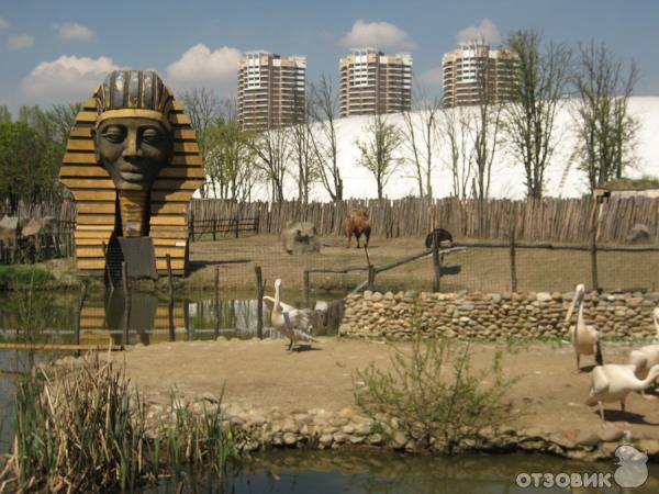 Сафари-парк - Краснодар - отзывы Сафари-парк