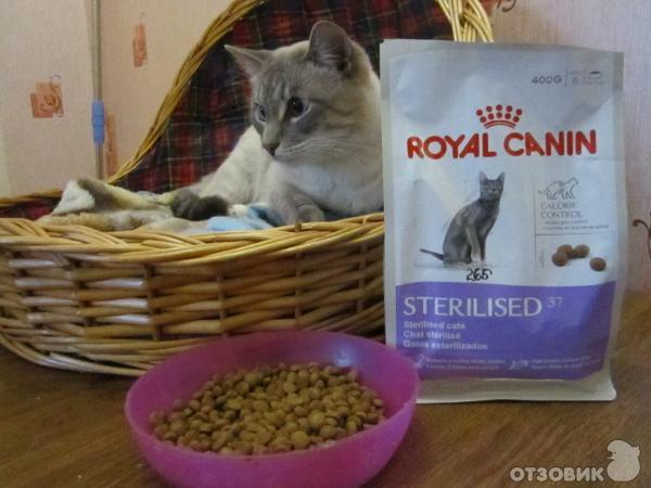 Корм royal canin ws 40