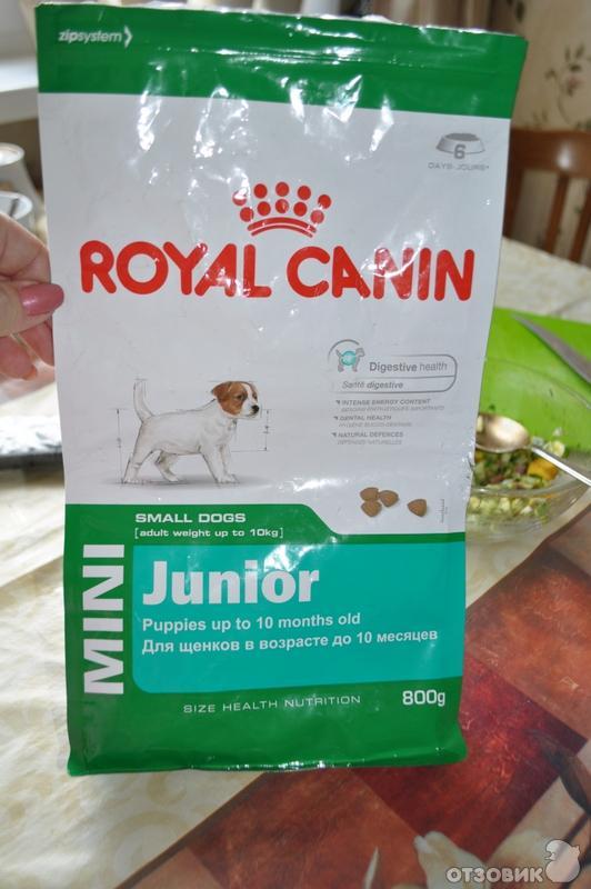 Корм royal canin junior mini 33