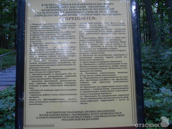 В белогорском районе начали раскопки места сражения крымских партизан - информационный портал новый крым