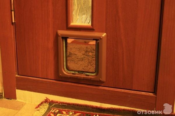 Вход в двери для кошки своими руками 48