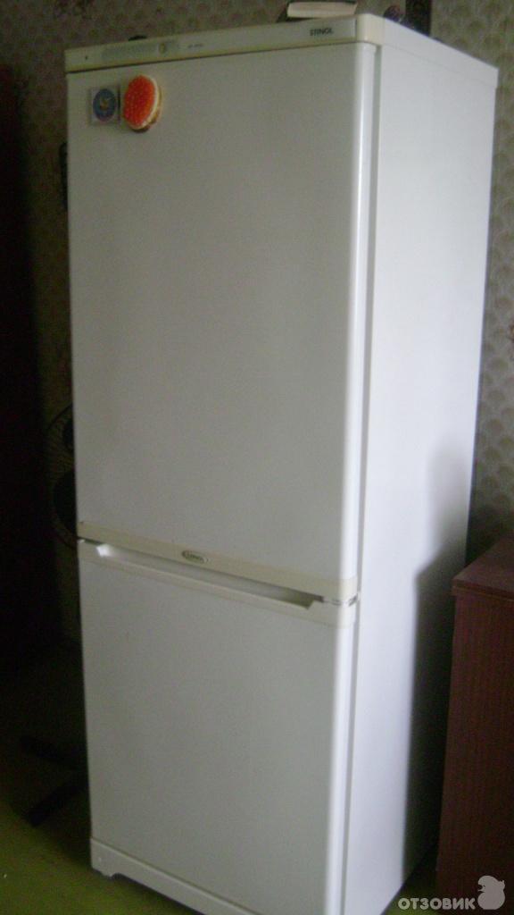 холодильник стинол-107 фото