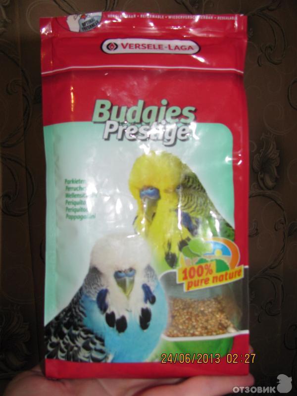 Как сделать корм для попугаев своими руками 20