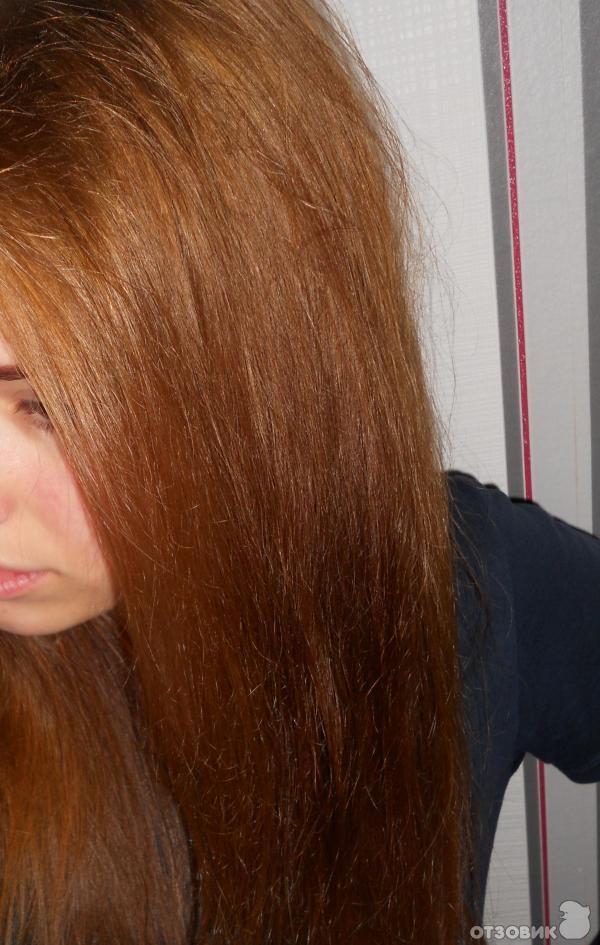Краска для волос олия. отзывы