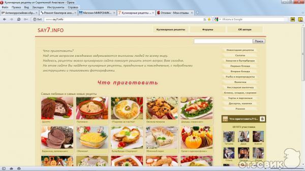 Анастасия Скрипкина - основательница Say7 info - Logo