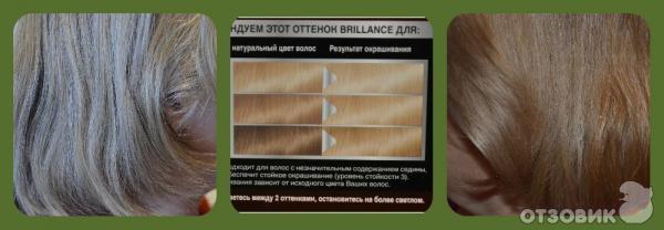 Краска для волос Schwarzkopf Brillance №811 Скандинавский блондин фото