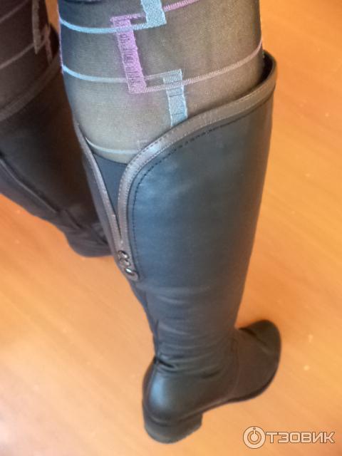 Толстые ноги в колготках фото 602-895