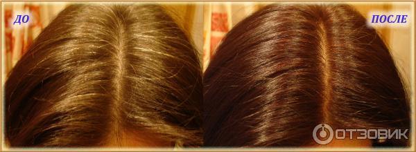 Индийская краска для волос ааша