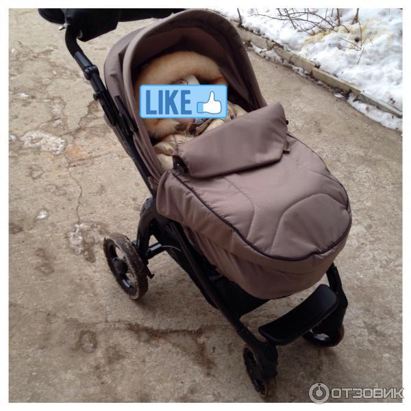 Когда ребенка сажают в прогулочную коляску 24