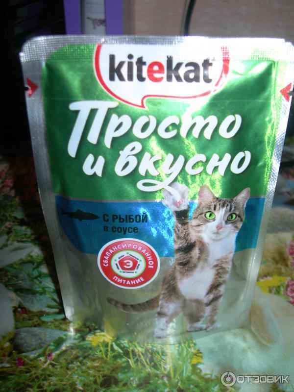 Корм для кошек официальный сайт подарок 63