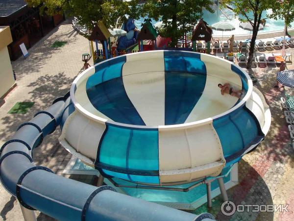 лазаревское морская звезда аквапарк фото