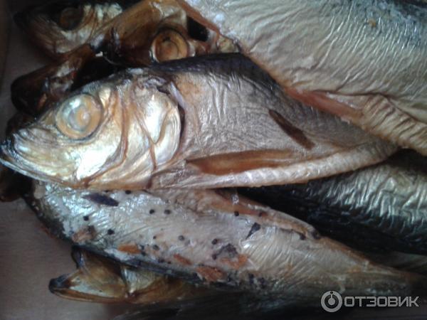 к чему снится рыба на рынке засоленая несвежая продаже