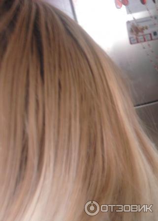9 уровень цвета волос фото