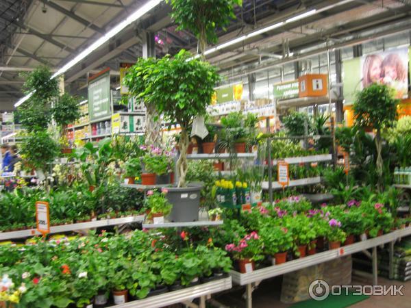 оби садовый каталог: