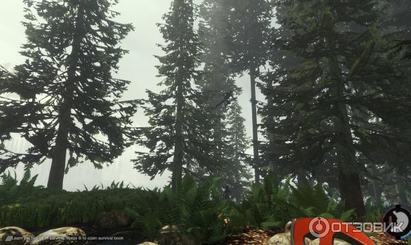 Выживание В Лесу Скачать Торрент Игра - фото 10