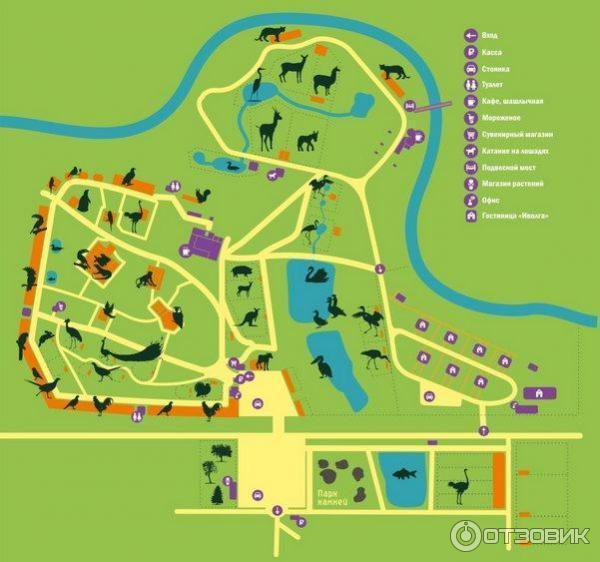 Парк птиц воробьи схема парка
