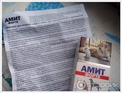 где купить амит форте ульяновск