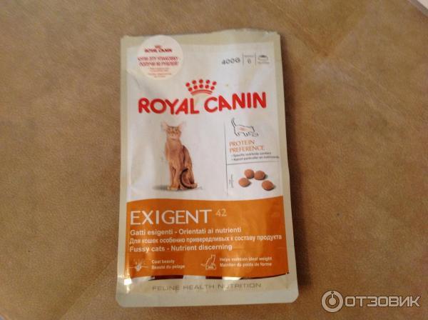 Корм royal canin или acana для кошек