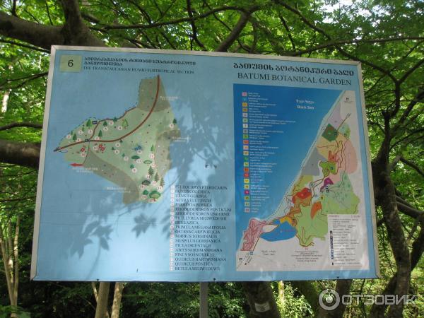 как доехать до ботанического сада в батуми делать если
