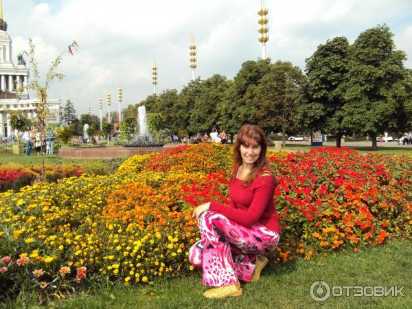 выставка цветы 2012 ввц фото: