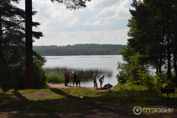 места для купания в ленинградской области Новое сайте