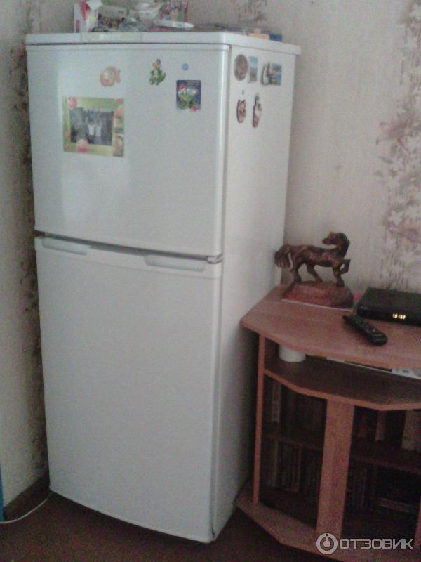 Двухкамерный Холодильник Бирюса 22 Инструкция - фото 11