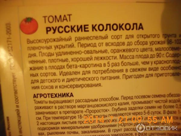 Томат колокола россии отзывы фото кто сажал 98