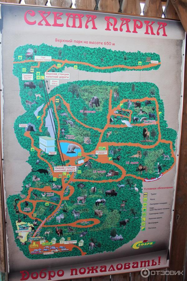 Сафари парк, схема