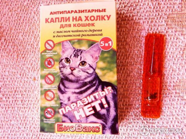 Биовакс капли для беременных кошек 22