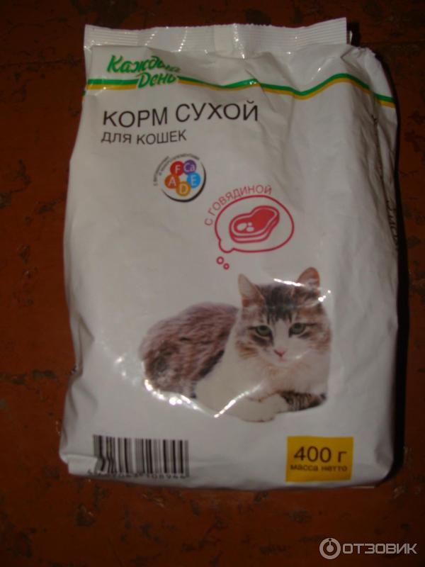 Как сделать сухой корм для кошек дома