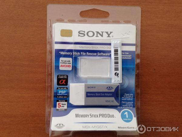Recover files from digital camera internal memory