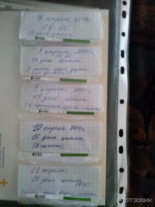 На 22 день цикла тест покажет беременность