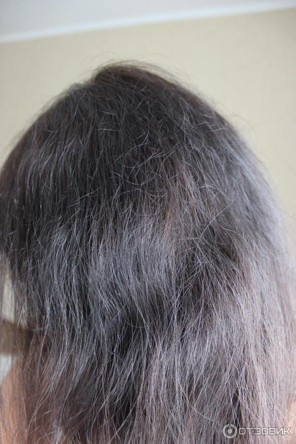 Волосы стали сухими и жесткими