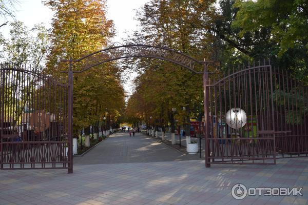 Александровского парка.
