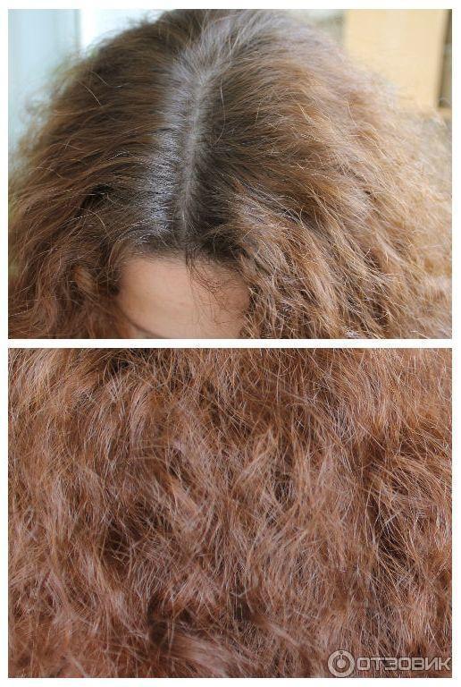 Шварцкопф краска для волос лесной орех