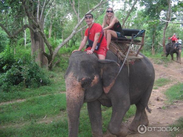 Экскурсии паттайя отзывы туристов