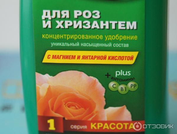 инструкция по применению Bona Forte для роз и хризантем - фото 9