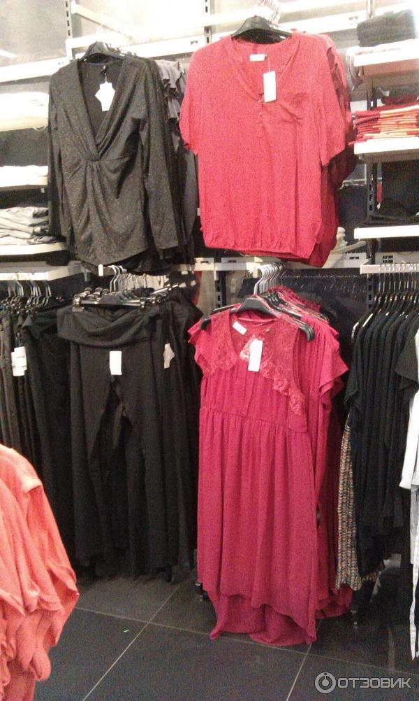 О Магазине Одежды