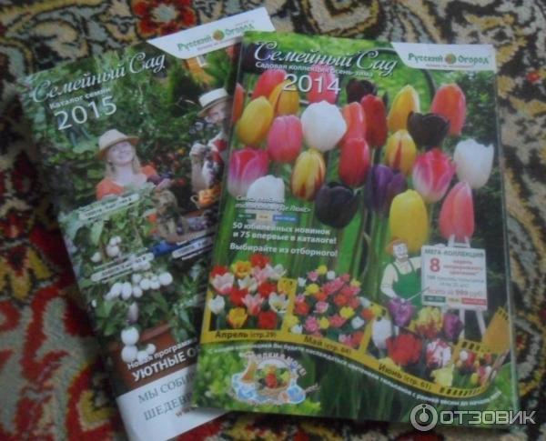 семена цветов каталог с фото