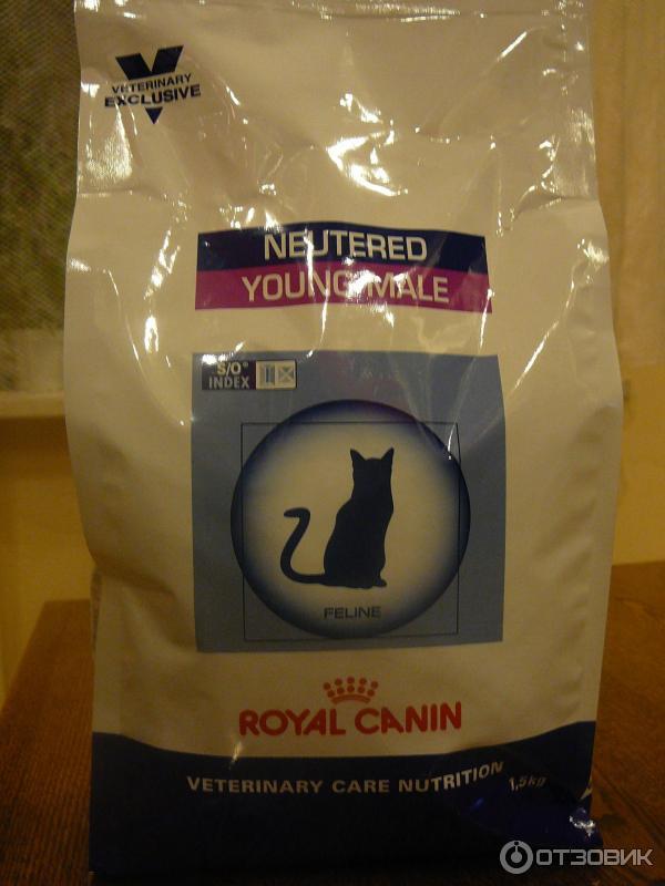 Корм royal canin кошки ветеринар