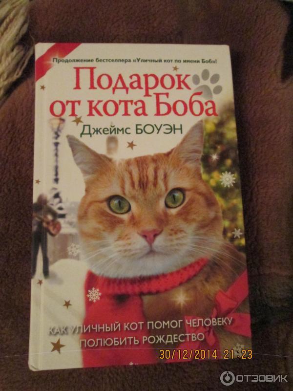 Джеймс боуэн подарок от кота боба как 558